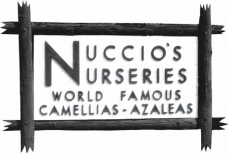 Growers of Camellias and Azaleas Since 1935!